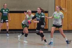 Da1 gegen Mettmann Sport (16.11.2019)